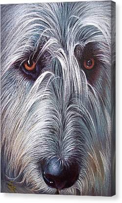 Irish Wolfhound Canvas Print by Elena Kolotusha