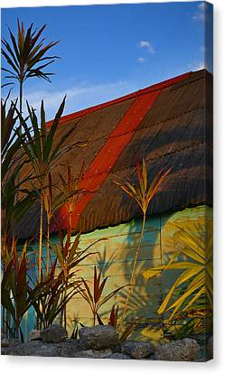 It's My Party Canvas Print by Skip Hunt