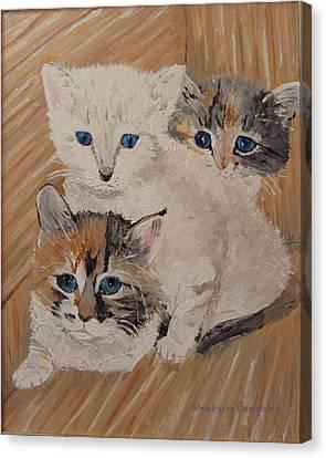 Ivy Iris And Dixie Canvas Print by Sharon  De Vore