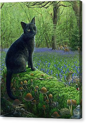 Jack In Paradise Canvas Print by Cara Bevan