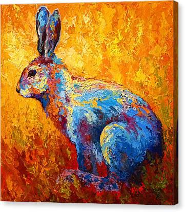 Jackrabbit Canvas Print by Marion Rose