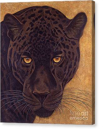 Jag Canvas Print by Lawrence Supino