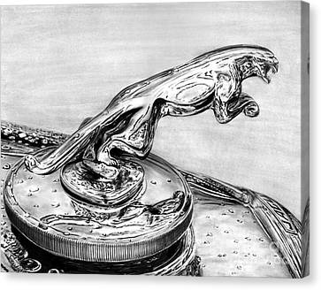 Jaguar Hood Emblem     Canvas Print by Peter Piatt