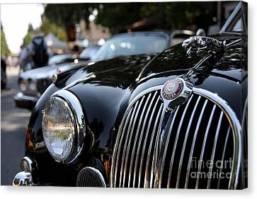 Jaguar Canvas Print by Wingsdomain Art and Photography