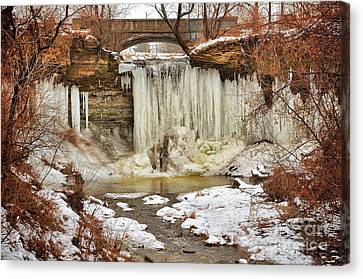 January Melt At Wequiock Falls  Canvas Print by Mark David Zahn
