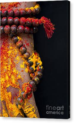 Japa Canvas Print by Tim Gainey