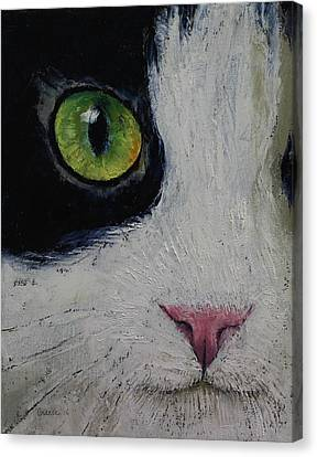 Japanese Bobtail Cat Canvas Print by Michael Creese