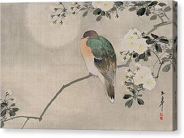 Japanese Silk Painting Of A Wood Pigeon Canvas Print by Japanese School