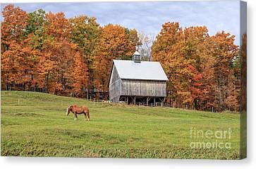 Jericho Hill Vermont Horse Barn Fall Foliage Canvas Print by Edward Fielding