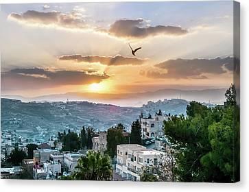 Jerusalem Sunrise Canvas Print by Desiree Silva