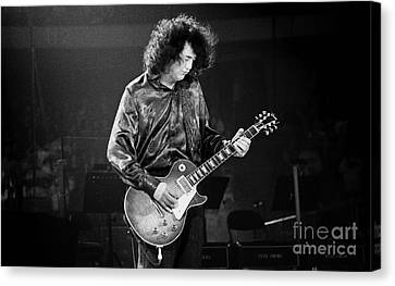 Jimmy Page-0028 Canvas Print by Timothy Bischoff