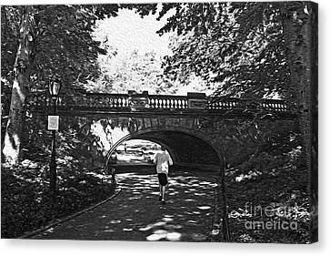 Jogging In Central Park Canvas Print by David Bearden