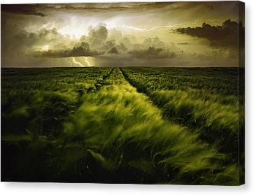Journey To The Fierce Storm Canvas Print by Sona Buchelova