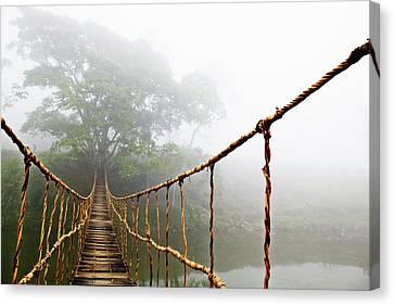 Jungle Journey Canvas Print by Skip Nall