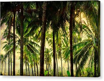 Jungle Paradise Canvas Print by James BO  Insogna