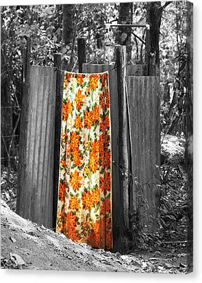 Jungle Shower Canvas Print by RC Photography
