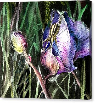 Just Visiting Canvas Print by Mindy Newman