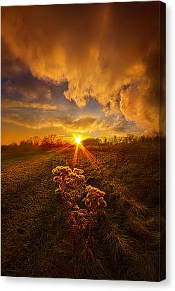 Just You And I Canvas Print by Phil Koch
