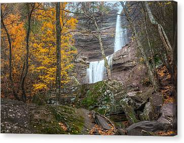 Kaaterskill Falls Thru The Forest Canvas Print by Bill Wakeley