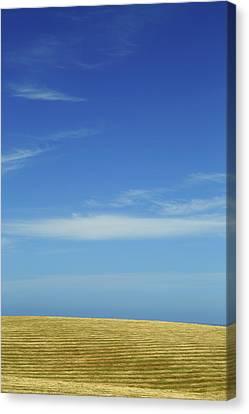 Kaikoura Peninsula 2am-000482 Canvas Print by Andrew McInnes
