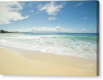 Kapalua Beach Maui Hawaii Canvas Print by Sharon Mau