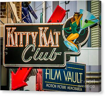 Kat Club Canvas Print by Perry Webster