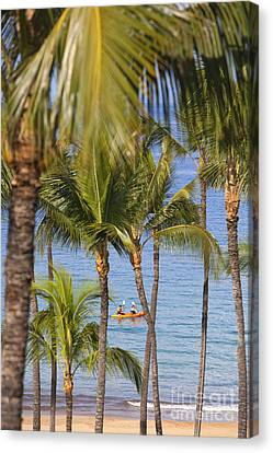 Kayakers Through Palms Canvas Print by Ron Dahlquist - Printscapes