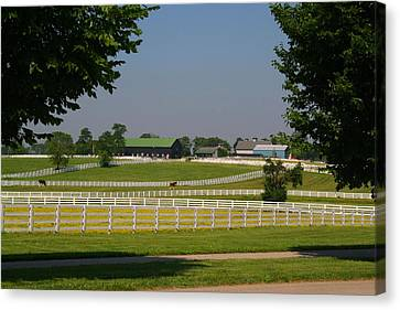 Kentucky Horse Park Canvas Print by Kathryn Meyer