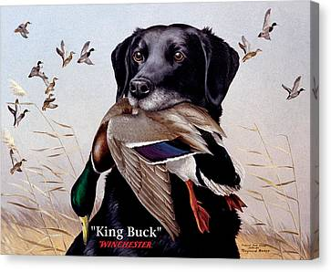 King Buck    1959 Federal Duck Stamp Artwork Canvas Print by Maynard Reece