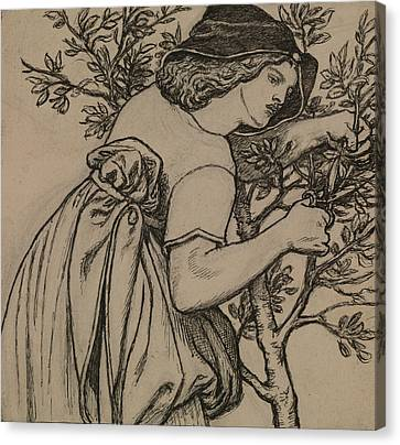 King Rene's Honeymoon  Canvas Print by Dante Gabriel Rossetti