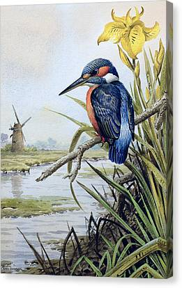 Kingfisher With Flag Iris And Windmill Canvas Print by Carl Donner