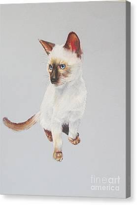 KIP Canvas Print by Karol Wyckoff