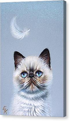 Kitten And Feather  Canvas Print by Elena Kolotusha