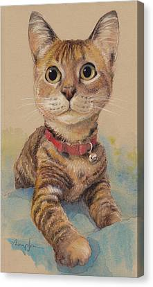 Kitten On The Loose Canvas Print by Tracie Thompson