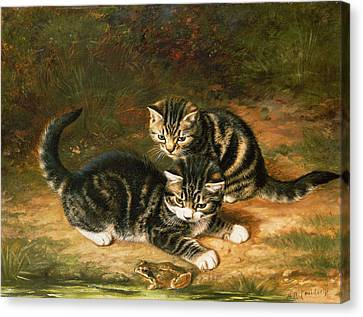 Kittens   Canvas Print by Horatio Henry Couldery