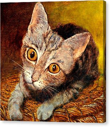 Kitty Canvas Print by Henryk Gorecki