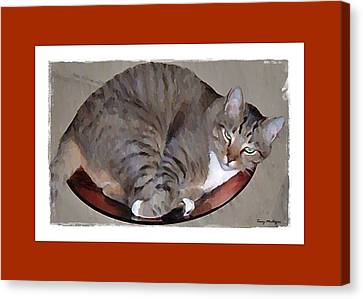 Canvas Print featuring the digital art Kitty In A Bowl by Terry Mulligan