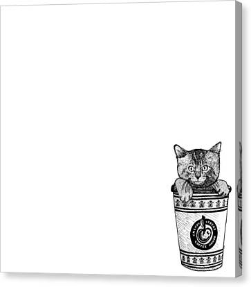 Kitty In A Coffee Cup Canvas Print by Karl Addison