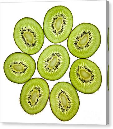 Kiwifruit Canvas Print by Nailia Schwarz