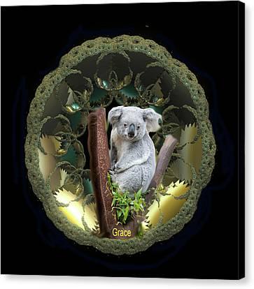 Koala Canvas Print by Julie Grace