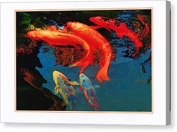 Koi Pond Canvas Print by Margaret Hood
