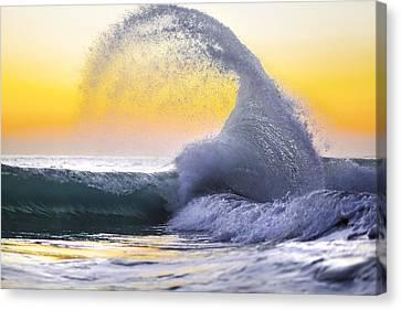 Kraken's Claw Canvas Print by Sean Davey