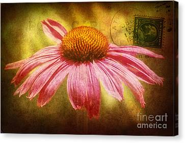 La Fleur Canvas Print by Angela Doelling AD DESIGN Photo and PhotoArt