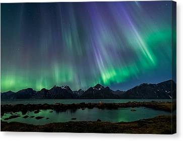 Lady Of The Night Canvas Print by Tor-Ivar Naess