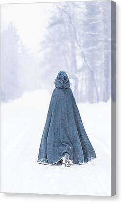 Lady Of Winter Canvas Print by Evelina Kremsdorf