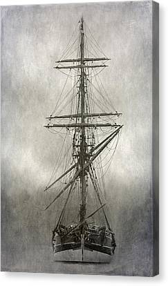 Lady Washington Canvas Print by Angie Vogel