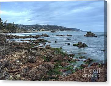 Laguna Beach Shoreline At Low Tide Canvas Print by Eddie Yerkish