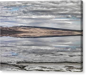 Lake Abert Reflections Canvas Print by Leland D Howard