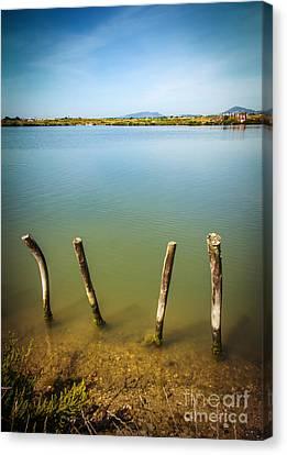 Lake And Poles Canvas Print by Carlos Caetano