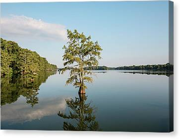 Lake Providence Louisiana Canvas Print by Scott Pellegrin
